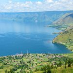 Kecantikan Danau Toba terancam rusak akibat eceng gondok