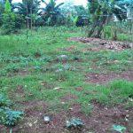 Masalah Tanah Di Samosir Jadi Polemik
